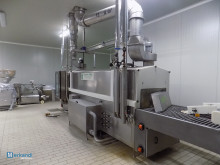 Washing systems for COLUSSI ERMES hams molds