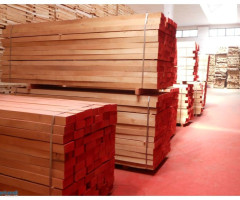 Beech timber short steamed edged AB quality
