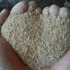 Sunflower meal for livestock feed - high and low protein