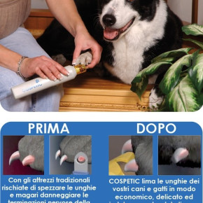 Cospetic care of your pet