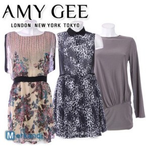 Wholesale of AMY GEE women's dresses