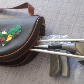 Bag with 6 golf clubs Offer