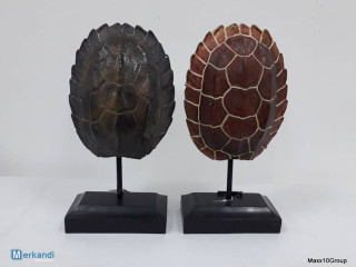 HOME ACCENTS decorative turtle shell